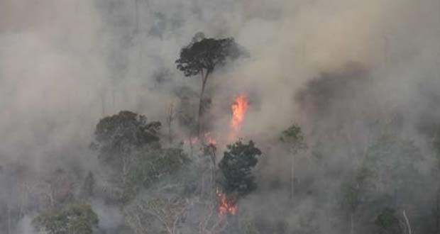 Photo of Incendios en la Amazonía amenaza con aniquilar indígenas no contactados
