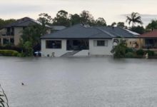 tiburon calle inundada australia 220x150 - Aparece un tiburón nadando por una calle inundada en Australia
