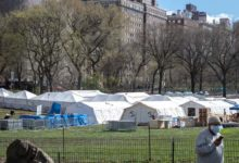 Photo of Nueva York enterrará a los muertos por coronavirus en parques públicos